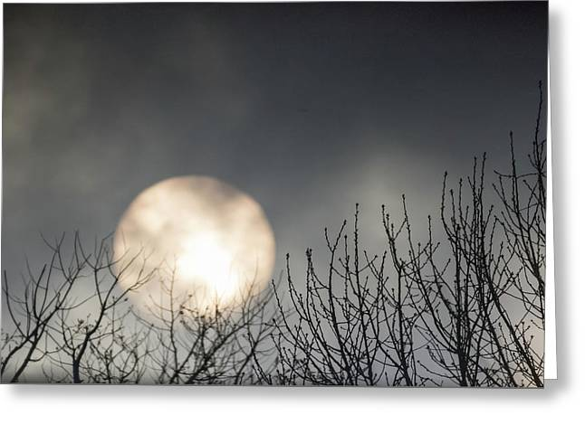 Rising Sun Moody Sky Gray Greeting Card by Terry DeLuco