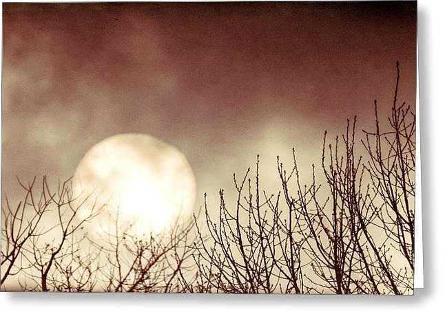 Rising Sun Moody Sky Greeting Card by Terry DeLuco