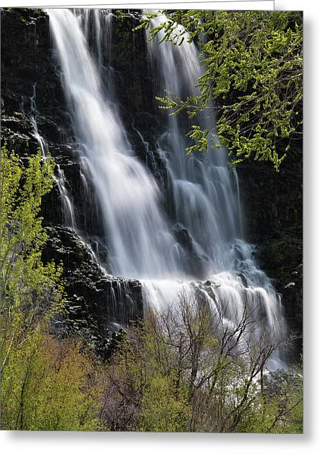 Ritter Falls 3 Greeting Card by Leland D Howard
