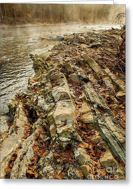 Greeting Card featuring the photograph River Bank by Iris Greenwell