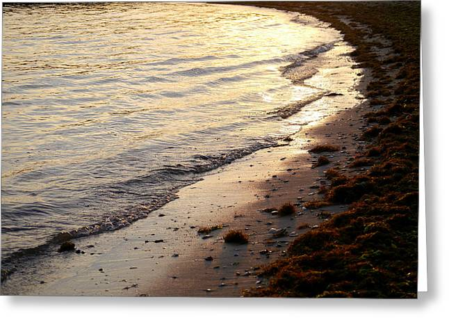 River Beach Greeting Card