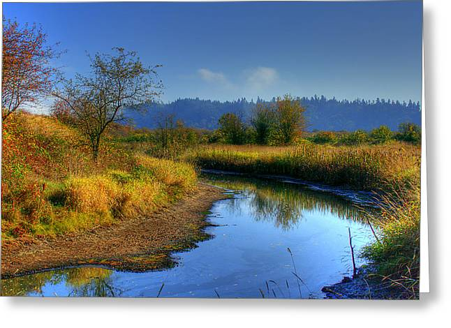 Wildlife Refuge. Greeting Cards - River Bend Greeting Card by David Patterson