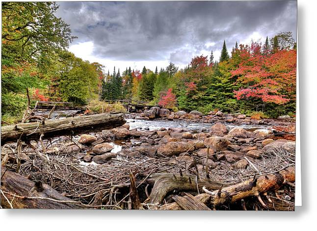 Greeting Card featuring the photograph River Debris At Indian Rapids by David Patterson