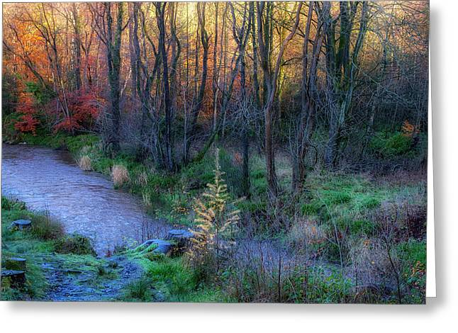 Greeting Card featuring the photograph River Devon In Clackmannan by Jeremy Lavender Photography