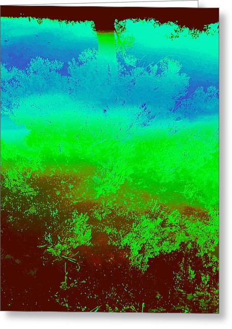River Dive Reflection Greeting Card by Terry w Scales
