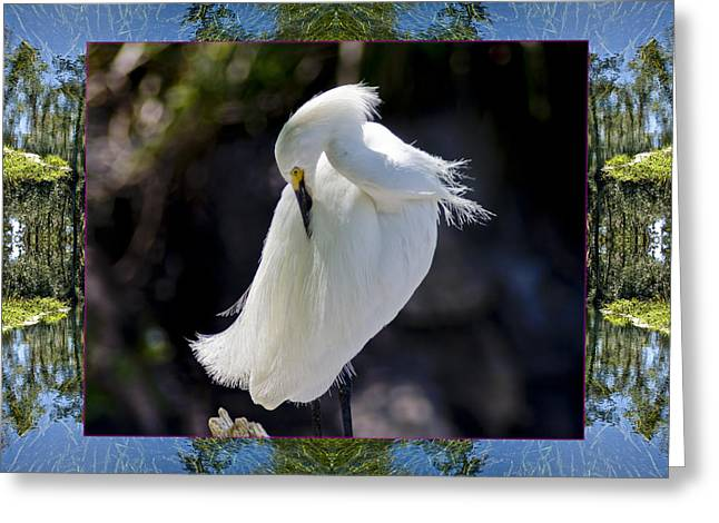 Greeting Card featuring the photograph River Egret by Bell And Todd