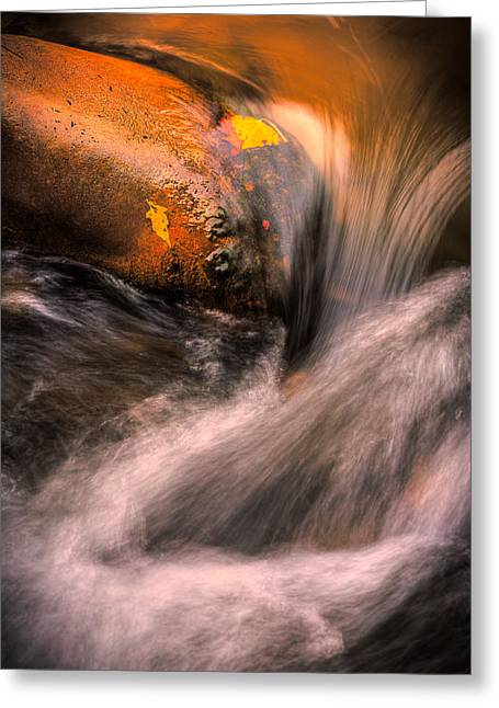 River Flow, Zion National Park Greeting Card