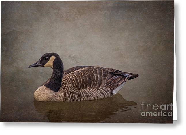 River Goose Greeting Card by Larry McMahon
