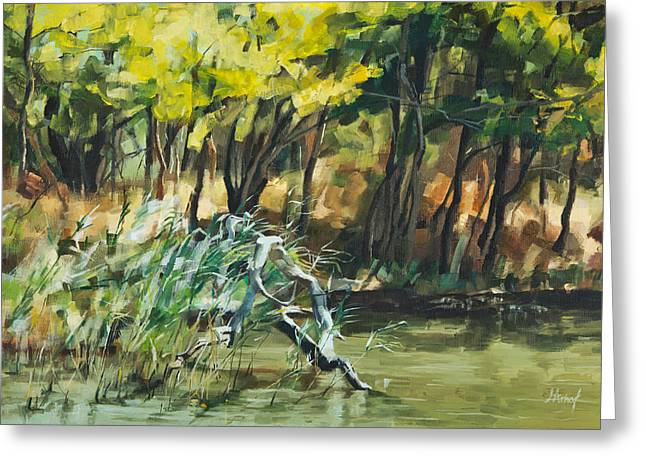 River In Summer Greeting Card