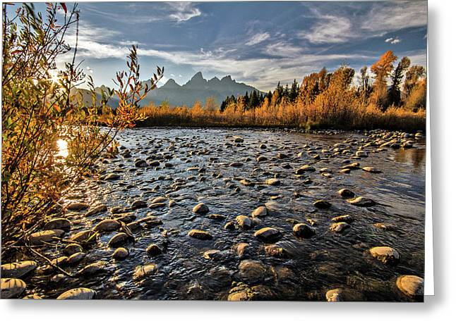 River In The Tetons Greeting Card
