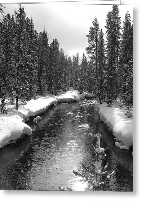 River In Yellowstone Greeting Card
