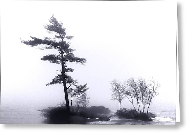 River Islands In Fog Greeting Card by Olivier Le Queinec