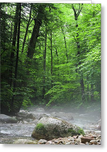River Mist Greeting Card