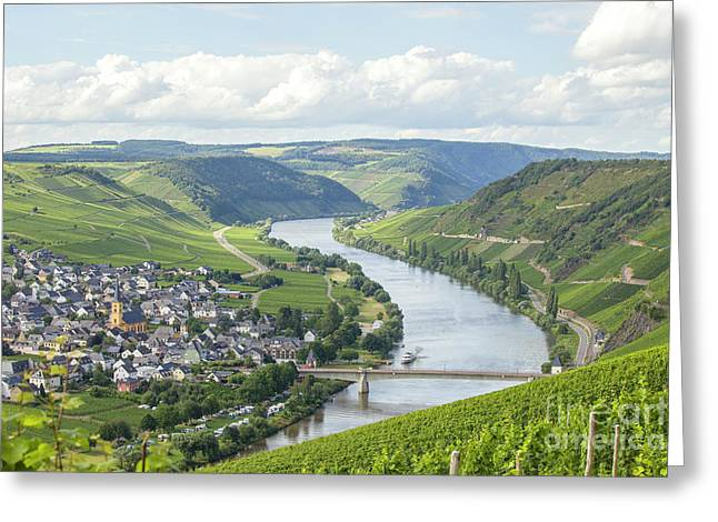 River Mosel And Vineyards Greeting Card by Patricia Hofmeester