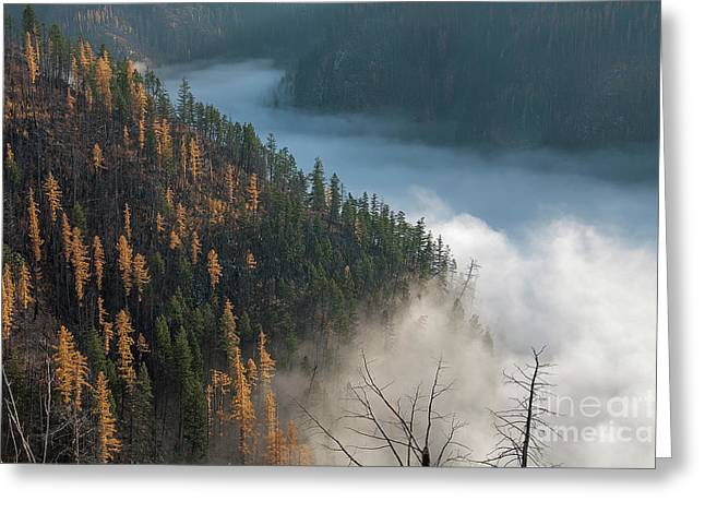 River Of Mist Greeting Card