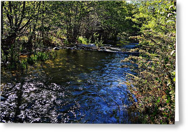 River Of Peace Greeting Card by Glenn McCarthy