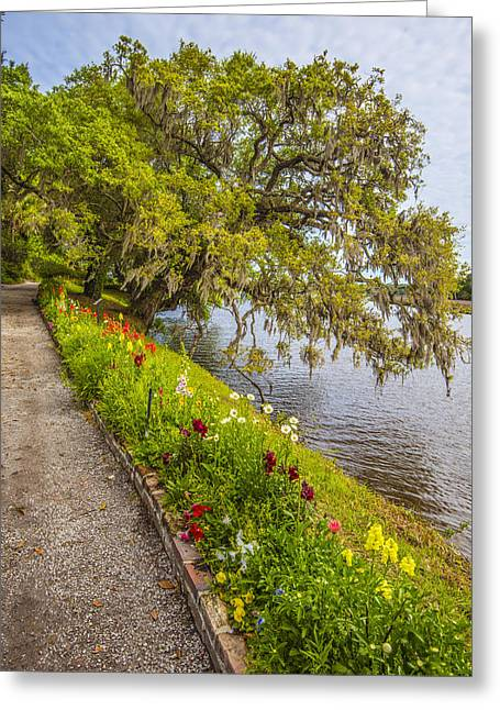 Greeting Card featuring the photograph River Path 1 by Steven Ainsworth