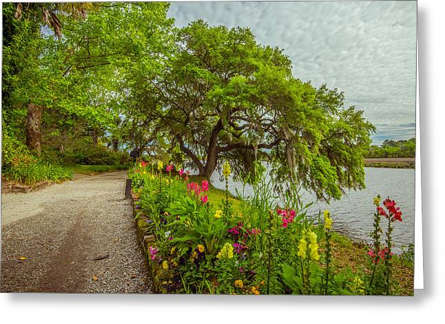 Greeting Card featuring the photograph River Path II by Steven Ainsworth