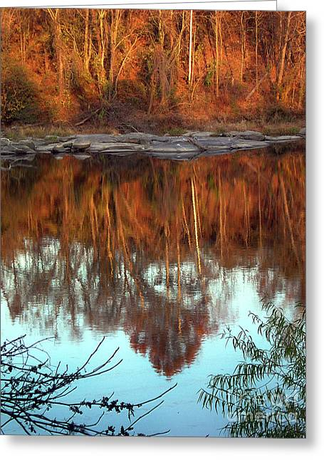 River Reflection Greeting Card by Skip Willits