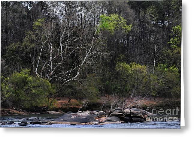 River Rock  Greeting Card by Skip Willits