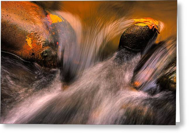 River Rocks, Zion National Park Greeting Card