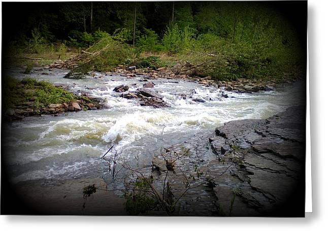 River Runs Greeting Card by Lesli Sherwin