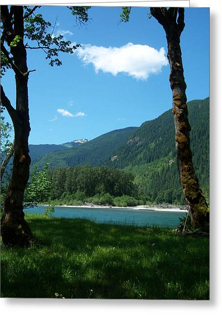 River Shade Greeting Card by Ken Day