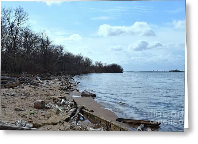 Delaware River Shoreline Greeting Card