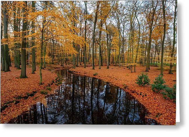 River Through Autumn Greeting Card