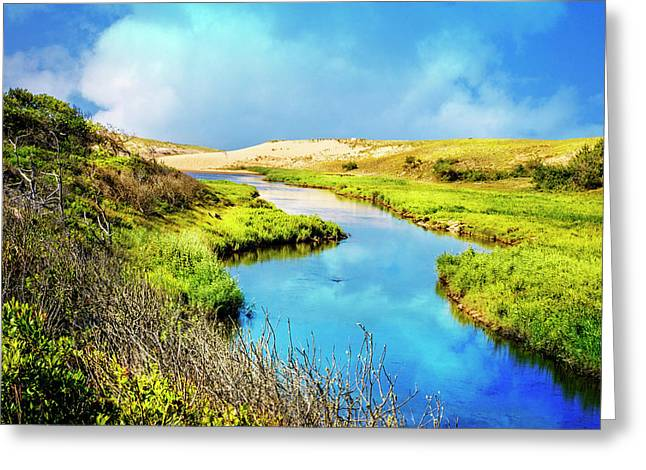 River To The Sea Greeting Card by Debra and Dave Vanderlaan