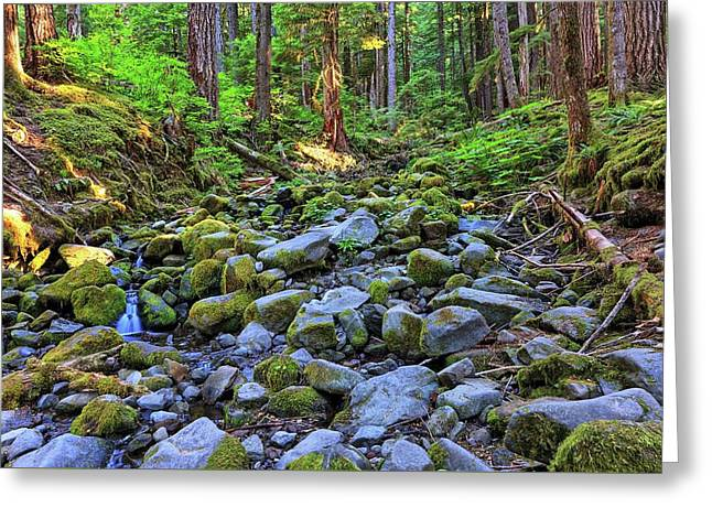 Riverbed Full Of Mossy Stones With Small Cascade Greeting Card