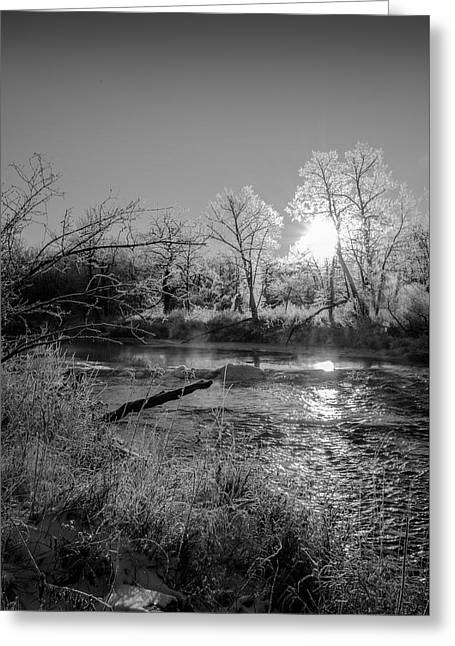Rivers Edge Greeting Card