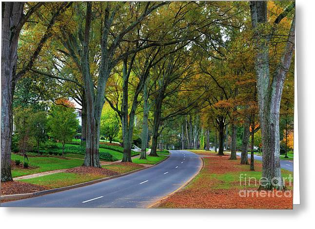 Road In Charlotte Greeting Card