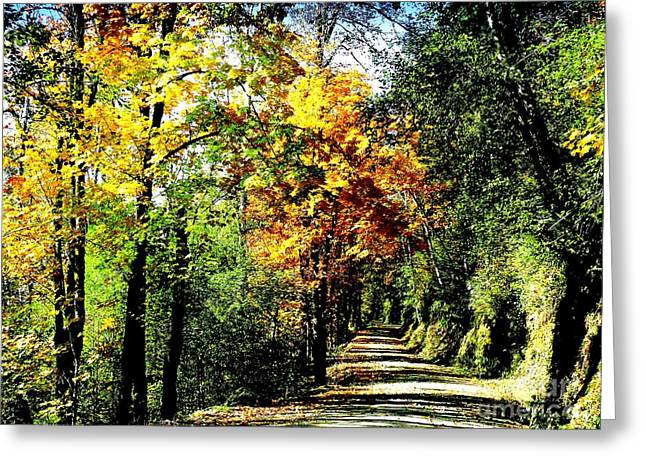 Greeting Card featuring the photograph Road Into Autumn by Terri Thompson