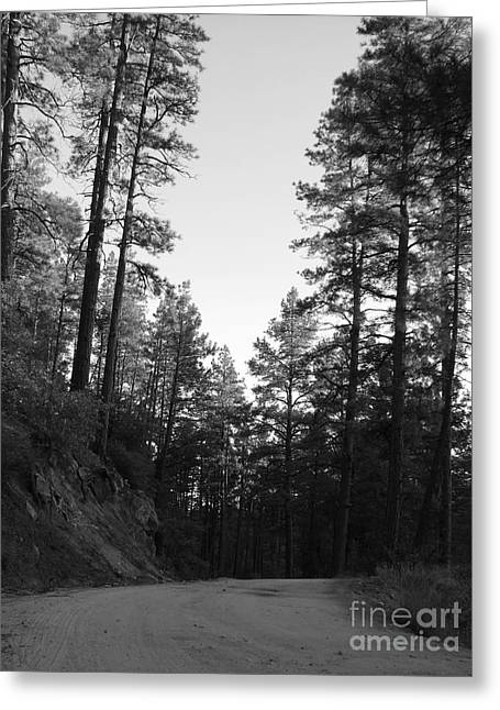 Road Less Traveled Greeting Card
