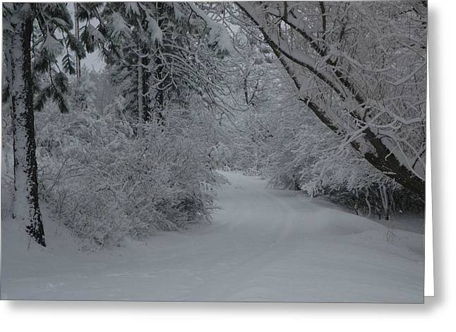 Road Out Greeting Card by Nancy Rohrig