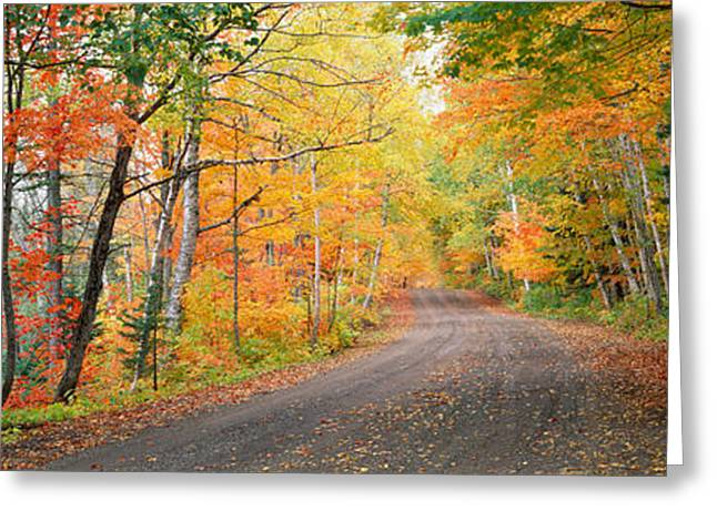 Road Passing Through A Forest, Keweenaw Greeting Card by Panoramic Images