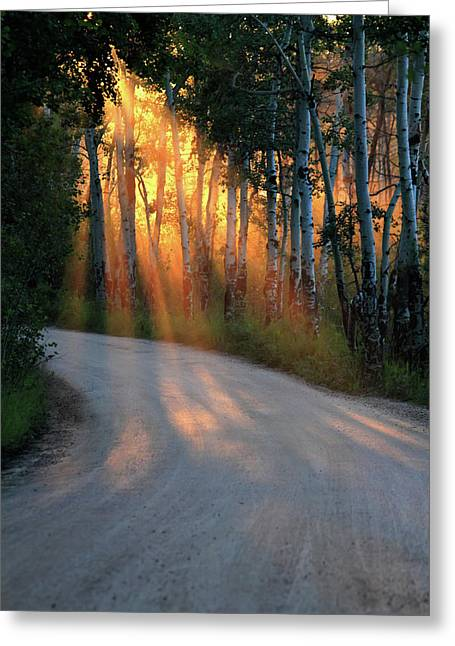 Road Rays Greeting Card