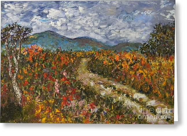 Road Through Colored Meadows Greeting Card by Emily Michaud