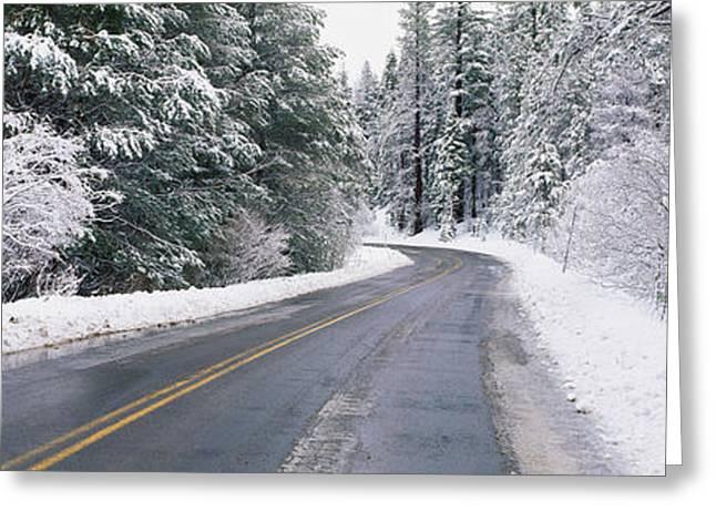 Road Through Snowy Forest, California Greeting Card