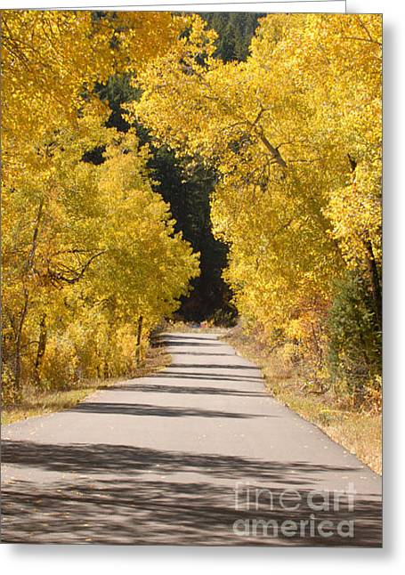 Road To Autumn Greeting Card by Dennis Hammer