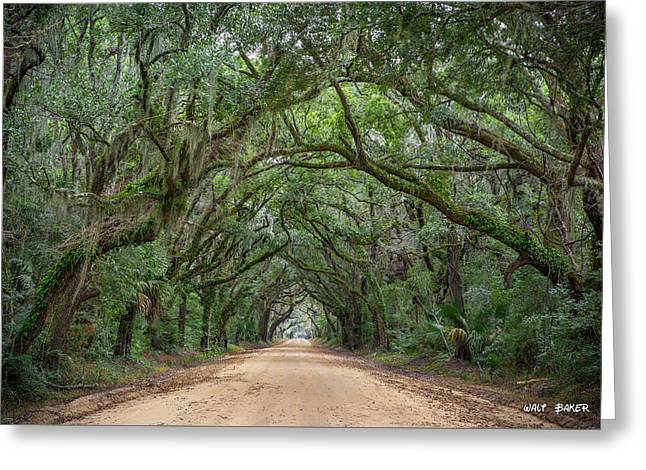 Road To Botany Bay Greeting Card by Walt  Baker