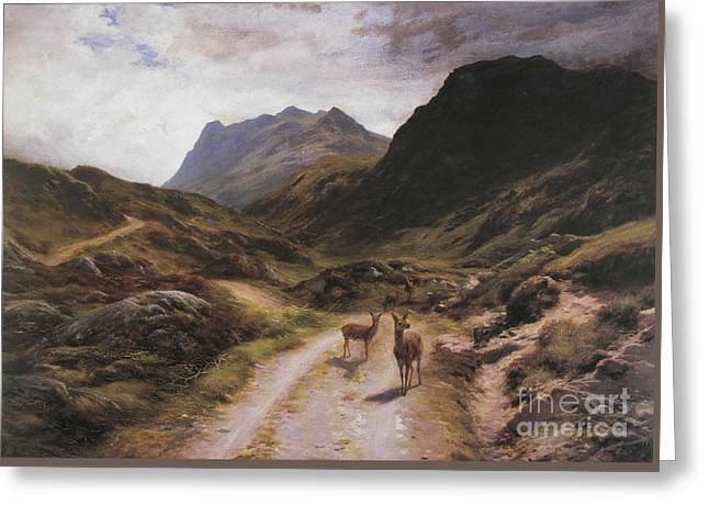 Road To Loch Maree Greeting Card
