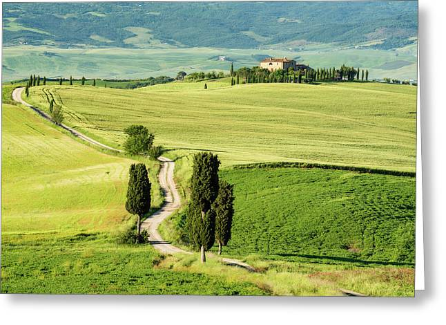 Road To Terrapille Greeting Card