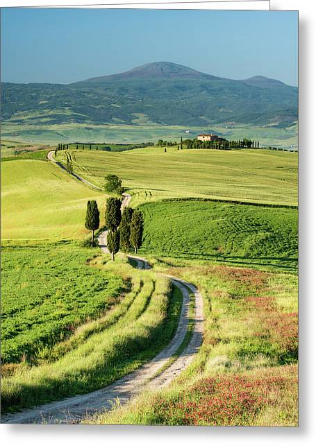 Road To Terrapille - Vertical Greeting Card by Michael Blanchette