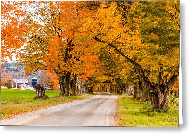Road To The Farm Greeting Card