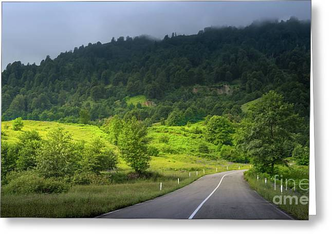 Road With A View Greeting Card by Svetlana Sewell