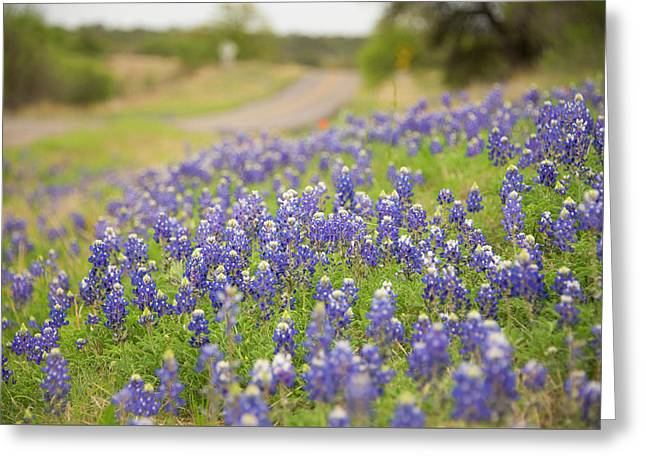 Roadside Attraction Greeting Card by Aaron Bedell