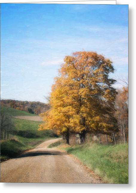 Roadside Tree In Autumn Greeting Card