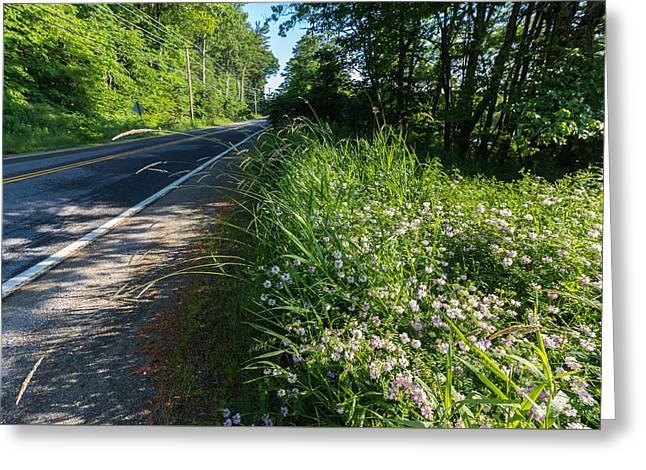 Roadside Wildflowers Greeting Card by Laurie Breton
